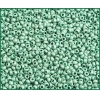 Seedbead 10/0 Metallic Mint Green Matte Terra Colour